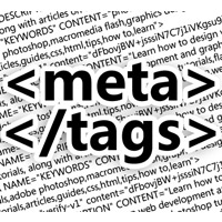 meta_tags-2